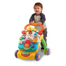 Vtech Baby Walker loopwagen